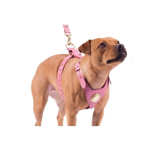 Leather Bull Terrier Harness Pink