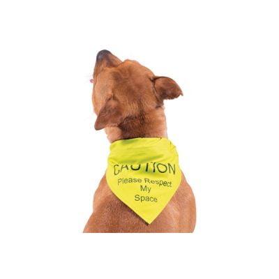 Warning Dog Bandana