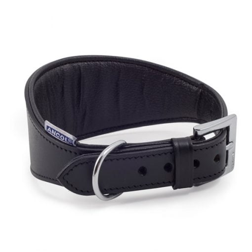 Whippet Padded Collar