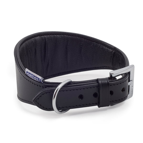 Whippet Padded Collar