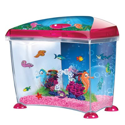 Marina Seahorse Aquarium