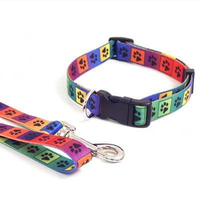Wag n Walk Collar Bright Multi Paw