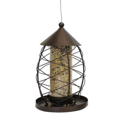 Antique Lantern Seed