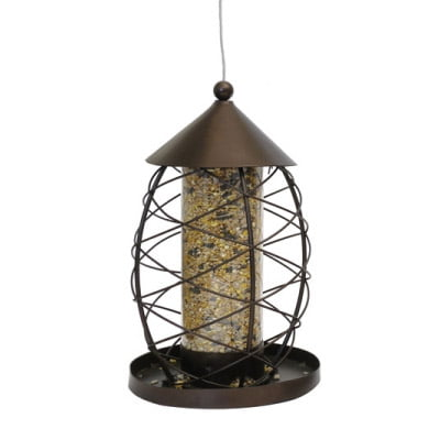 Antique Lantern Seed