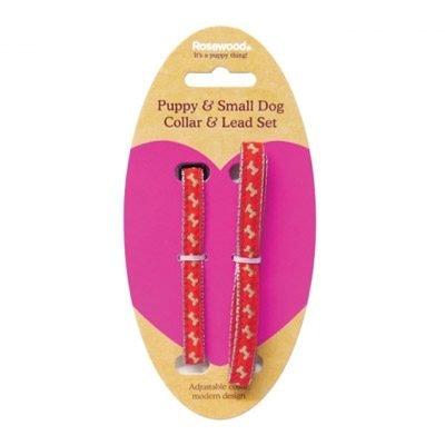 Bone Puppy Collar and Lead Set