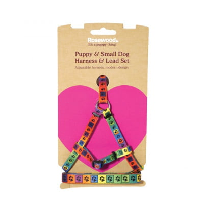 Puppy Harness and Lead Set