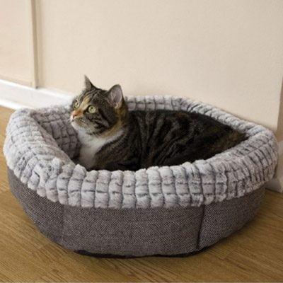 Tweed & Plush Bed