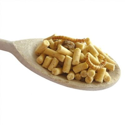 Suet pellets - insects