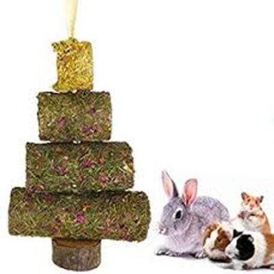 Christmas for Small Animals